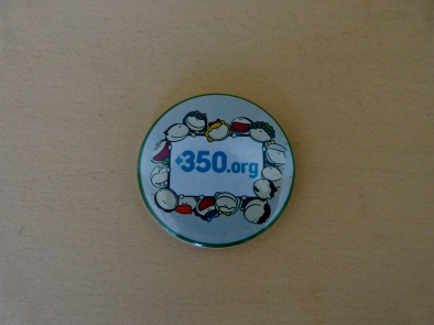 Large 350 Pin. 10,000 VND (order 10 or more for 8,000 VND each)